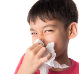 Kenali Penyakit Japanese Encephalitis Lebih Jauh, Moms!